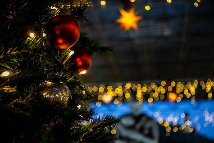 日常的には乗らない乗り物に乗ると、いつもとはちょっと違う景色に出会えるかもしれません。非日常のわくわくやドキドキと一緒に、今年は「ちょっと違う」クリスマスの過ごし方もおすすめですよ。