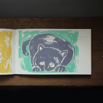 きくちさんの勢いのある筆遣いと色使いが美しく、印刷と造本にもこだわりを感じる絵本です。