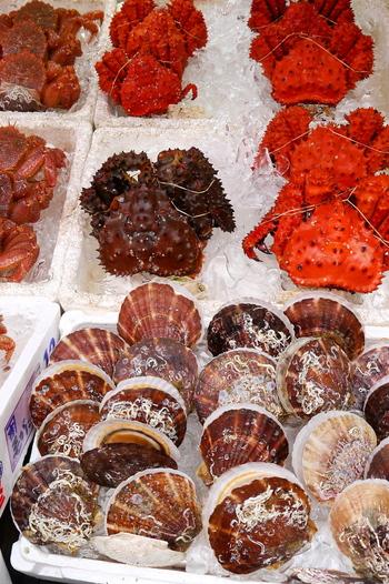冬のおいしい味覚を求めて、わざわざ出かける旅。ちょっと贅沢な気分ではありませんか?脂ののった魚やたっぷり身の詰まった蟹、ぷりぷりの牡蠣…聞いただけでもおなかがすいてきそうな旬の魚介と出合うために、ぜひお出かけしてみませんか?