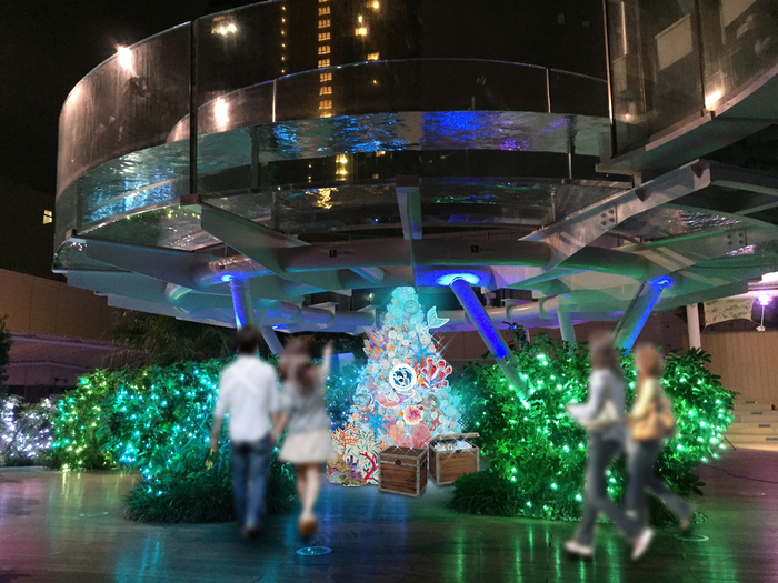 12月25日(火)までは、館内がクリスマス仕様に模様替えする『サンシャイン水族館のChristmas Party!』を楽しめますよ。生きものたちと海の泡をイメージしたクリスマスツリーのほか、もちろん、イルミネーションも。16:30以降に点灯され、幻想的な雰囲気に包まれます。