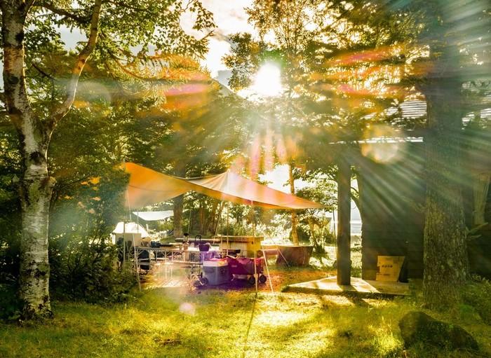 ですが近年、野外での音楽フェスやキャンプなどが若者のあいだで支持されるようになり、再び山林の価値や魅力が見直されつつあります。yasoはそんな時流にフィットした活動ともいえますね。