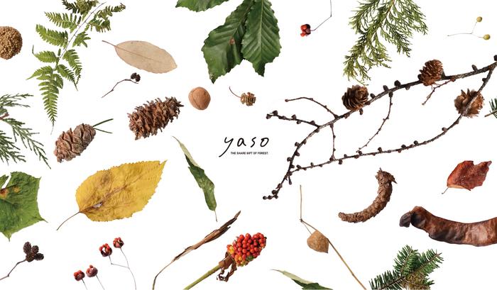 標本のような、オブジェのような。yasoのプロダクトは、美しい佇まいだけでなく、樹木を愛する人たちの深いメッセージが込められています。たまには自然を身近に感じながら、森や林に想いを馳せてみるのもいいものですよ。