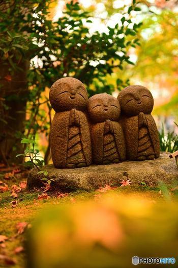 境内には「和み地蔵」や「良縁地蔵」も。ほっこり何か良いことが起こりそうな予感を与えてくれる素敵なお寺です。