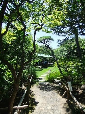 素敵な邸宅の中と美しいお庭でお茶をいただくことができます。文豪の暮らしに触れながら飲むお茶は格別の美味しさです。