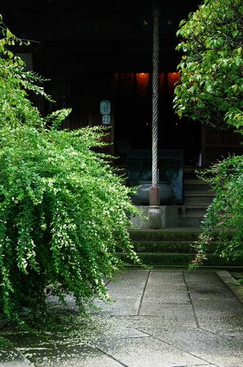 宝戒寺には病魔退散、財宝富貴の福神、仏教の守り神とも言われている「毘沙門天」が祀られています。とても神聖な空気が流れています。