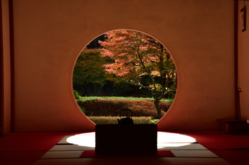 都心から約1時間で訪れることができる歴史深い街、鎌倉。古民家カフェをはじめ、寺院巡りなど年を重ねるごとに日本の古き良き習慣や建立物に触れる機会も増えて、その良さが年々わかるようになってきますよね。