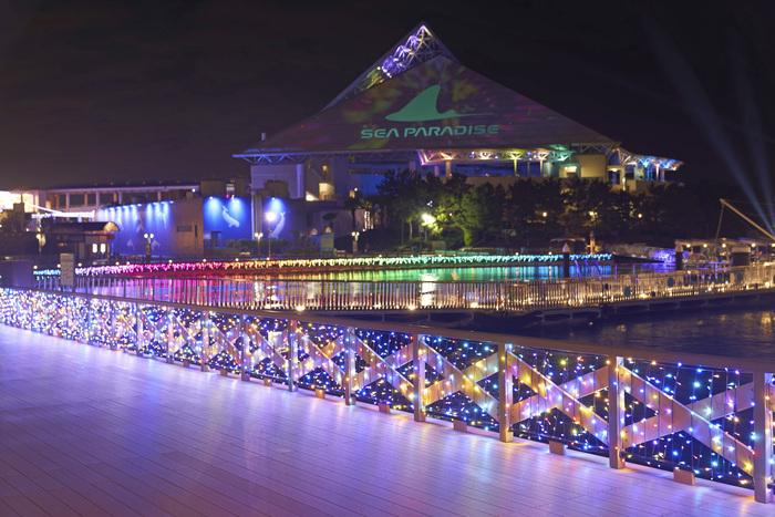 2019年2月28日(木)まで、冬期ナイトイベントとして「Mystical Island 2018」を開催しています。島内のいたるところにイルミネーションが点灯し、『アクアミュージアム』のシンボルでもある三角屋根にも、このようなプロジェクション映像の投射が。