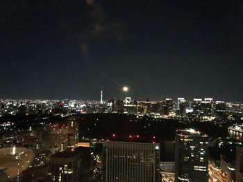 「ザ・プリンスギャラリー東京紀尾井町」の36階にある「オールデイダイニング オアシスガーデン」では、スカイツリーや東京タワーを見ながらのお食事を楽しめます。東京で贅沢な夜を過ごしたいなら、ぜひこちらへ。