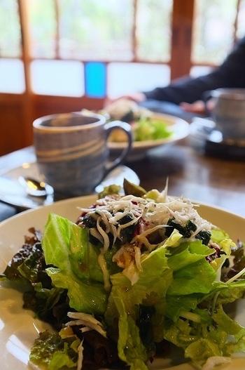 サラダ・パスタ・デザート・ドリンクのお手軽ランチから、メインやバーニャカウダが付くものなどメニューが豊富。デザートメニューも充実しているので、カフェ利用もおすすめです◎。
