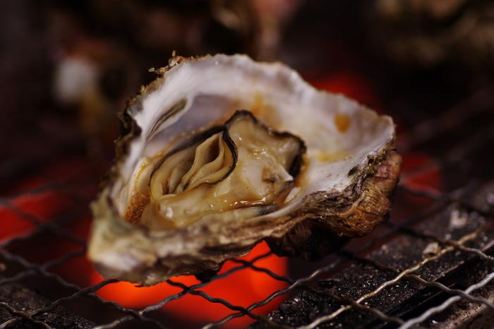 広島に牡蠣を食べに行くなら、1~3月上旬にかけて催される「広島牡蠣祭り」が狙い目です。2月の週末を中心に沿岸部や宮島、市内などで開催されます。定番の焼き牡蠣から土手鍋、雑炊など体が温まるような牡蠣料理が盛り沢山!一番美味しい時季の牡蠣をリーズナブルに楽しめるので、期間さえ合えばぜひ足を運びたいですね。