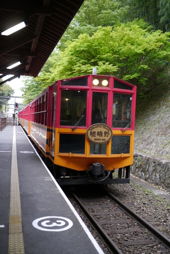 嵯峨~亀岡間を約25分かけて渓谷の空中散歩を楽しむことができる京都でも大人気の「嵐山トロッコ列車」。 四季折々の景色を望むことができ、見所では一時停止してくれるので旅の思い出を存分に写真へ収めることができます。帰りはもう一度トロッコ列車に乗るもよし、保津川下りで川からの絶景を楽しむもよし。京都を満喫できること間違いなしです。