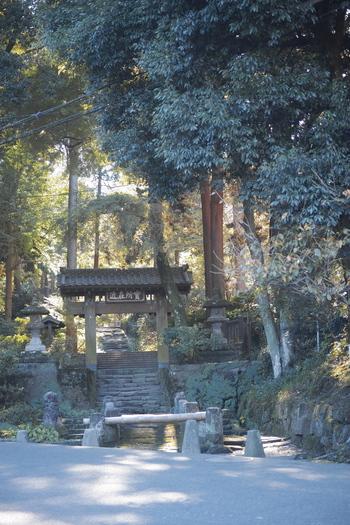 長谷寺を後にして、江ノ電もしくはバスで鎌倉駅へ。そして北鎌倉へ向かいます。北鎌倉から徒歩約6分の位置にある「浄智寺」。一本路地に入った瞬間、緑深い香りと凛と張り詰めた空気が私たちを迎え入れてくれます。