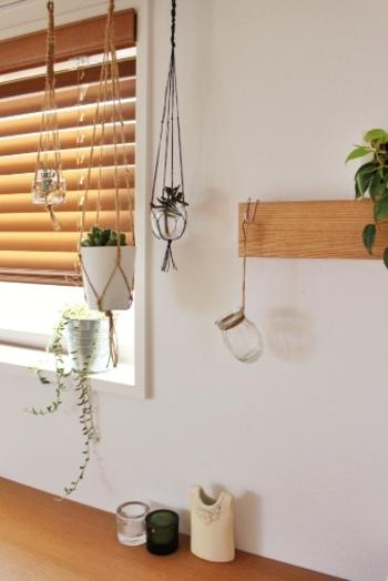 グリーン好きな方にとって「いつのまにか増えているもの」といえば、観葉植物や多肉植物。カーテンレールや梁を利用してハンギングを楽しむのはいかがでしょう?窓辺に吊るせば日当たりも得られて一石二鳥。