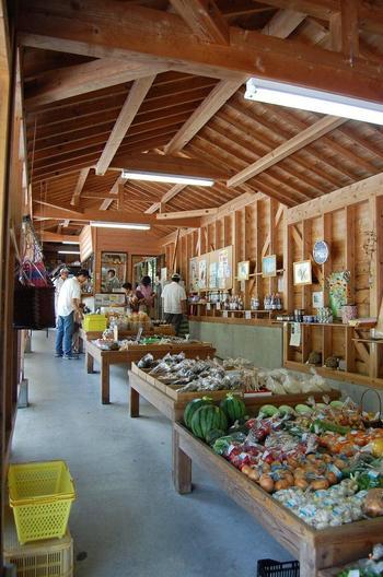 お土産よりも、地元のとれたて野菜などの農産物がたくさん販売されており、ときにはイノシシの肉や、雉肉も!