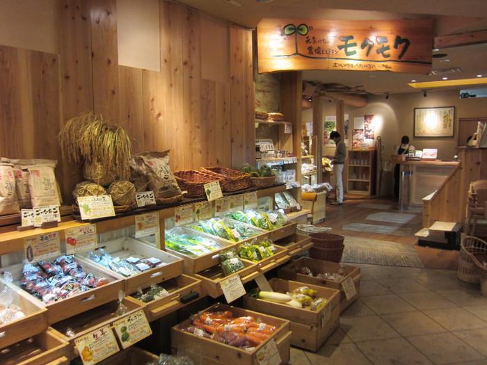 JRセントラルタワーズプラザ13階にある「元気になる農場レストラン モクモク」は、新鮮な野菜をたっぷり味わえるバイキングレストランです。