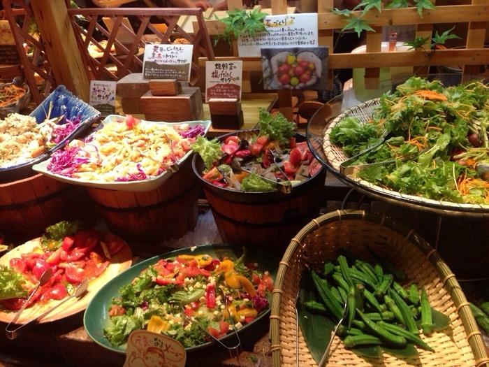 お腹いっぱい食べるだけでなく、体にやさしいメニューをバランス良くいただけるのがこのお店の特徴。原料や産地、料理方法にいたるまで可能な限り公表されているため、安心してお腹いっぱいいただけますよ。