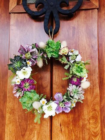 様々な種類のクリスマスローズを組み合わせて、こんなに素敵な「リース」にもアレンジできるんですよ◎。色とりどりの美しい花が、玄関をおしゃれに演出してくれます。
