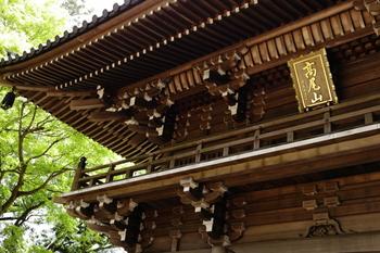 高尾山と言ったら、やはり山の上に佇む『薬王院』!744年の奈良時代に、聖武天皇から指令され行基(ぎょうき)という僧によって開山されています。