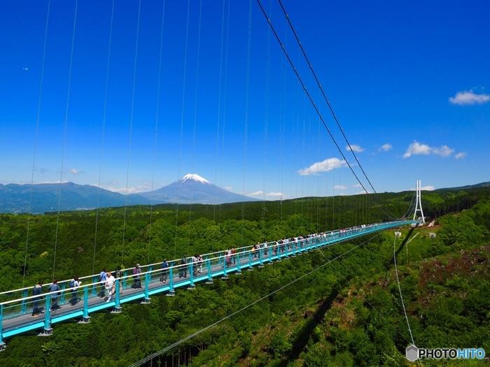 「三島スカイウォーク」は、全長400mの吊橋。歩行者専用としては日本一の長さを誇ります。富士山や駿河湾、伊豆の山々という、ここ三島だけで見られる絶景を味わえます。 三島スカイウォークは三嶋大社とは三島駅を挟んで反対側、三島市笹原新田にあります。ですが三島駅からバスで約20分ほどの距離なので、時間に余裕があるときは、三嶋大社参拝とあわせてぜひ訪れたいスポットです。
