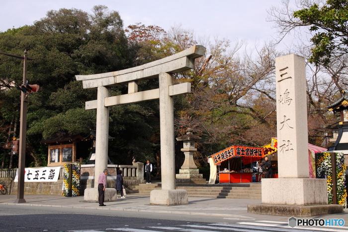 JR線の三島駅からは約15分、伊豆箱根鉄道の三島田町駅からは7分ほどで「三嶋大社」に到着します。こちらは三嶋大社の大鳥居です。