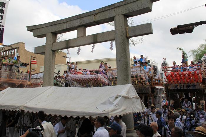 三島市民からは「大社の祭り」と呼ばれている「三嶋大祭り」(三島夏まつり)は、毎年8月に行われています。お祭り期間の「山車とシャギリの日」には「シャギリ」と呼ばれる三嶋囃子が街に響き渡り、山車の引きまわしを見ることができます。三嶋大社の前も、この賑わい!