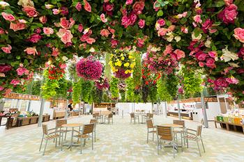 また雨の日には、スカイガーデンを楽しむのもおすすめです◎天井いっぱいに咲き誇る花のシャンデリアの元、ゆっくりとティータイムなんてとっても贅沢ですね。