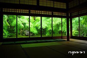 瑠璃光院では、春と秋に特別拝観が行なわれています。春の新緑は、吸い込まれてしまいそうな美しさがあります。