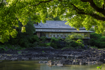 三島駅から歩いて3分ほどのところにある三島市立公園「楽寿園」は、明治時代に小松宮彰仁親王の別邸として造営された跡地です。富士山の雪解け水が湧き出し、自然豊かな庭園は国の天然記念物、そして名勝に指定されています。三嶋神社とあわせて訪れたい三島の観光スポットです。
