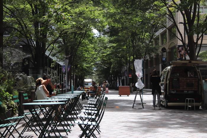 有名ブランドブティックの路面店や複合商業施設、オフィスビルが並ぶ「丸の内仲通り」は、丸の内のメインストリート。  枝を広げる街路樹やショップの洒落たディスプレイ、所々に置かれた彫刻作品。レストランのテラス席も洒落ていて、一人気ままに散策するのに丁度良い通りです。以下の3店は、一人気ままに過ごせる「丸の内仲通り」のお勧めのお店です。 【街路樹の緑が鮮やかな晩夏の頃の「丸の内仲通り」】