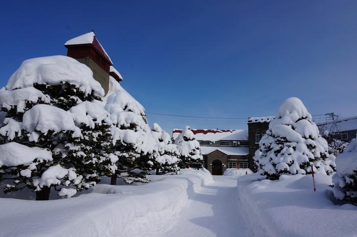 2018年12月に後志自動車道が開通したことで、小樽の隣街である余市町へもスムーズに行けるようになりました。冬のイベント「小樽・余市 ゆき物語」では、余市駅前を暖色のイルミネーションで彩る「琥珀色の夢」などが催されます。そのほか、ニッカウヰスキー北海道工場では冬限定・人数限定のナイトツアーも実施。早くに満員になってしまう人気の催しなので、参加希望の方は早めに日程をチェックしてご予約を。