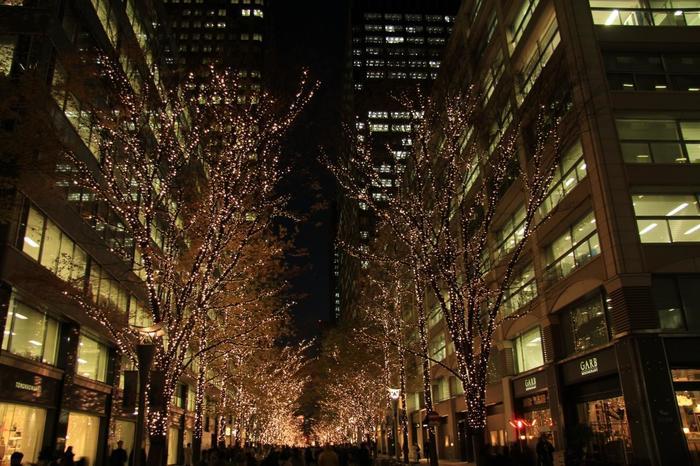 """また丸の内ならではの""""夜景""""も見応えがあります。オフィスの照明、駅舎や街路に当たるスポットライト等など、様々な光が集積した丸の内の夜景は、息を飲むような美しさ。特に空気が澄んだ冬の季節は、街灯もライトアップも一段と華やかです。  【「丸の内仲通り」の冬の風物詩""""丸の内イルミネーション""""は、例年11月初旬~翌年2月中旬頃開催。】"""