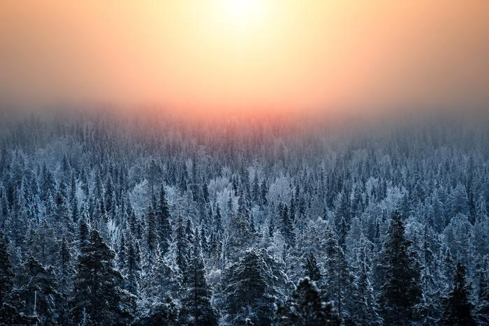 ムーミンやサンタクロースで知られているフィンランドは、1年の3分の1が冬と言われ、本格的な冬の季節には気温がマイナス30℃になるほど冷え込みます。