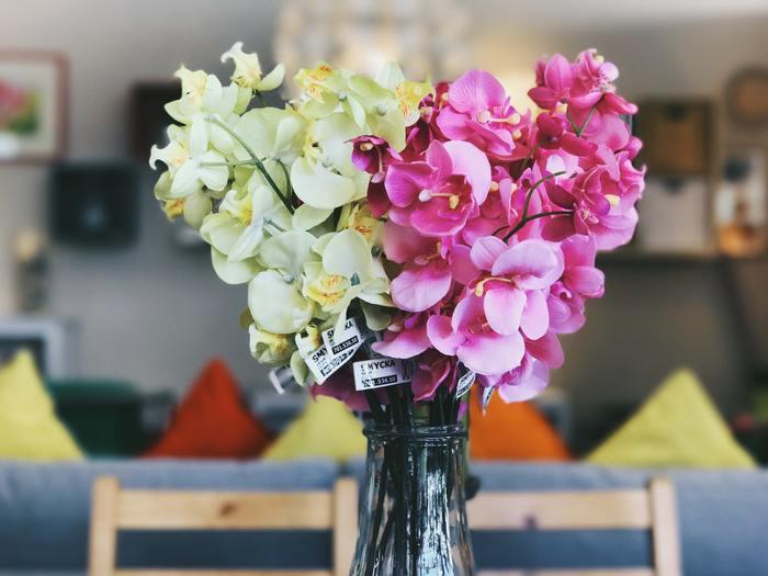 一足早く春を感じさせるお花で彩っても素敵ですね。
