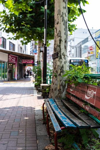 荻窪は、ふっと思いついたときに気軽に足を運べる街。ちょっとした空き時間のランチに、お気に入りのお店探しに出かけてみてください。自分だけのランチタイムの過ごし方が見つかるかもしれません♪