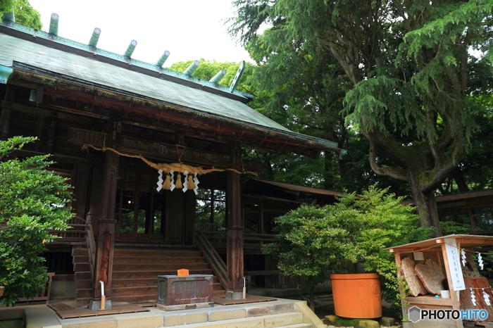 神奈川県小田原市にある「報徳二宮神社」は、江戸末期に農村や藩を貧困から救った偉人・二宮尊徳翁(二宮金次郎)を祀った神社です。