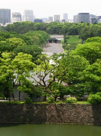 「出光美術館」の楽しみは、幅広いコレクションも然ることながら、眼下に皇居の緑を一望できる、ゆったりとしたロビーです。丸の内の景色を眺めるのに、最高の場所です。 【正面に見えるのは、皇居正門】