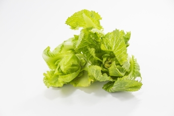 高菜は外側の葉がやや固めで、漬物にするのが一般的です。内側の葉はやわらかく、生でも食べられます。カラシナの仲間なので少しピリリとした味わいが特徴となっています。