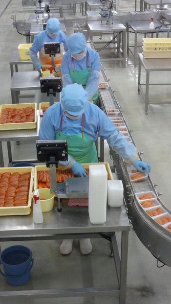 全国的にも親しまれている福岡グルメの一つである明太子。ここでは明太子の製造過程の見学ができ、工房では自分でオリジナルの明太子作りにも挑戦できます。