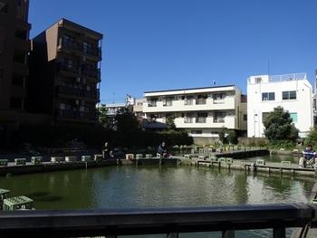 さらに、阿佐ヶ谷駅から徒歩3分のところには、釣りができる「寿々木園」があります。大正13年創業の老舗。注目は、さまざまな種類の金魚です。1時間につき3匹までお持ち帰りもできますので、自宅で育てたい金魚探しにもおすすめ♪