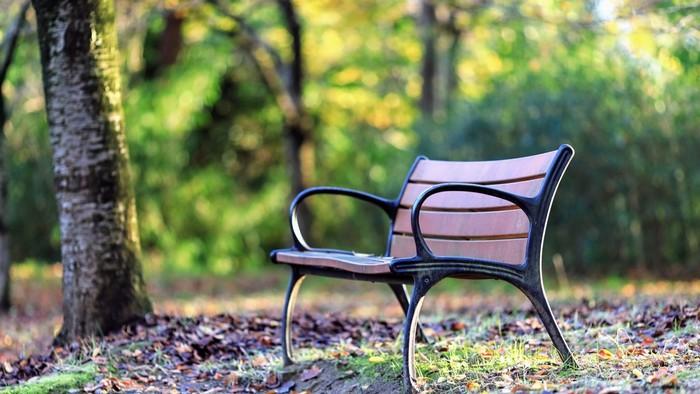 自然に囲まれた場所は、それだけで心が癒されます。疲れているなと感じたらコーヒーでも買って、緑が豊かな広い公園でのんびりリフレッシュしてみては。