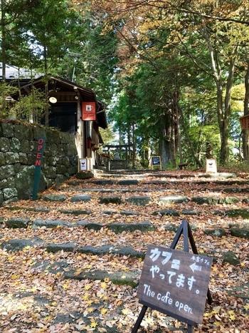 そんな神秘的な神橋から階段を上ると「本宮カフェ」の看板が見えてきます。奥の方に進むと「本宮神社」があり、豊かな自然の中でくつろぐことができるカフェです。