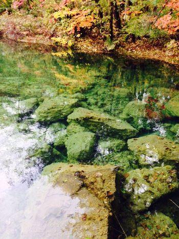 敷地内にある散策路には、プライベートの沼も。美しく澄んだ水が、木々の季節ごとの姿を映します。まさに自然と一体となったホテルです。