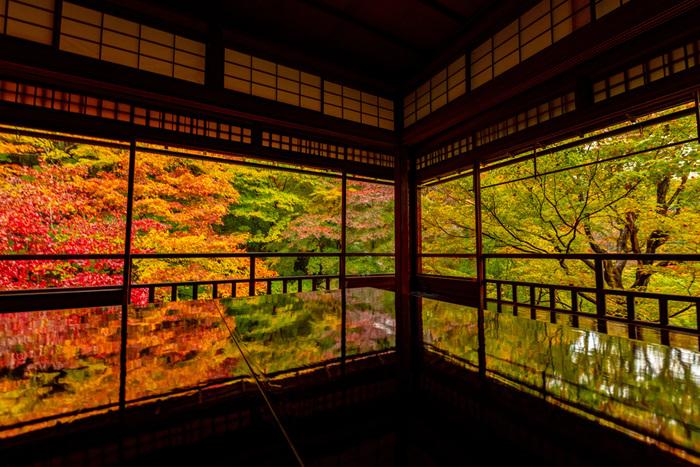そして何と言っても圧巻なのが秋の瑠璃光院。廊下の板張りや写経用の机に紅葉が映りこむさまは、多くの人を魅了し息をのむ美しさがあります。