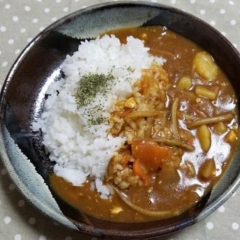 残った豚汁に水とカレールゥを足して馴染ませたら出来上がり、のアレンジメニューです。 和風な風味で白いご飯がすすみます。