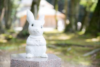 出雲大社の境内には、かわいらしい白うさぎの像がたくさん。 これは大国主大神さまにまつわる「因幡の白兎」のお話にちなんで奉納されたものなのだそう。  「因幡の白うさぎ」のお話は、かいつまんでいうとこんなお話。