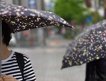 バッグにすっぽりと入って、持ち運びに便利な折り畳み傘。 突然の雨にさっとバッグから取り出せるとスマートですよね。 それでこそ大人女子。  でも、案外折りたたみ傘は実用性が重視されているものが多く、なかなか気に入ったデザインのものが見つからない!という方も多いのでは。  ここでは折り畳み傘デビューしようかなという方や、買い替えを検討している方におすすめのおしゃれな折り畳み傘をご紹介します。  素敵な大人女子、もちろんスマート男子にもおすすめです!