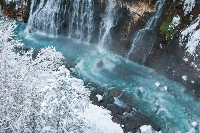 「青い池」から近い「白ひげの滝」も冬期間のライトアップを実施。青みがかった水が冬でも凍らずに流れ落ちる白ひげの滝では、水面から立ち上る水蒸気が周囲の樹の枝につき、彫刻のように繊細な樹氷を見ることができます。