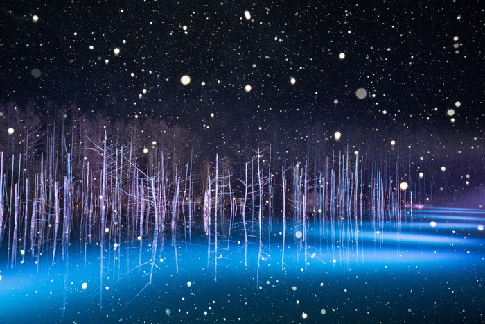 白金温泉からほど近い「青い池」。冬期間には幻想的な風景を引き立てるライトアップが行われます。青い湖面はやがて凍結して雪が積もり、純白の世界に変わります。その日、その瞬間だけの、あなただけのベストショットを見つけてくださいね。
