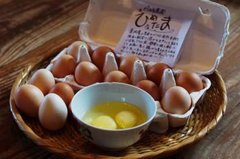 """卵は「川崎農園の平飼い卵""""ひめたま""""」。雑味がなく、昔懐かしい卵の味わい、黄みはほのかなレモン色をしています。  新潟市秋葉区で無農薬、無肥料で育てており、鶏の餌は、県内産の玄米をベースに季節や鶏の体調に合わせた自家配合したものを与えているのだそう。"""