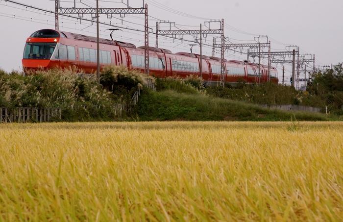 都内から電車を使っては、ロマンスカーが便利です。新宿から箱根湯本まで、最速で73分で行くことができるそう。他にも、東海道線や東海道新幹線を使って「小田原駅」まで行き、箱根登山鉄道で「箱根湯本」駅まで行くことができます。 また、羽田や横浜からは箱根湯本行きのバスが出ているので、そちらもチェック。